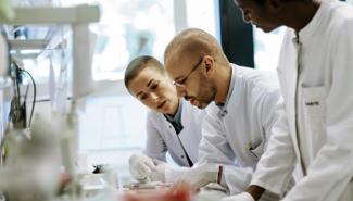 Wissenschaftler und Wissenschaftlerinnen schauen konzentriert auf etwas vor sich.